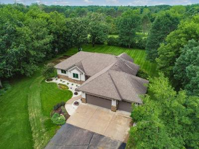 North Branch Single Family Home For Sale: 38280 Golf Avenue