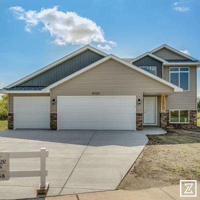 Saint Cloud Single Family Home For Sale: 6720 Yosemite Street