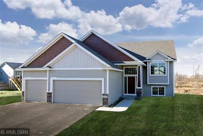 Saint Paul Park Single Family Home For Sale: 1525 10th Avenue