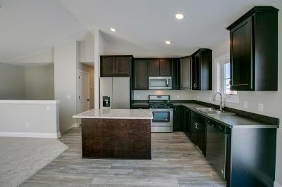 New Richmond Single Family Home For Sale: 1253 Legacy Parkway