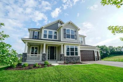 Victoria Single Family Home For Sale: 8661 Buttercup Court