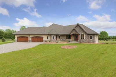 Grant Single Family Home For Sale: 11940 Honeye Avenue N