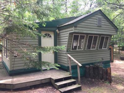 Sturgeon Lake Single Family Home For Sale: 37114 Spruce Drive