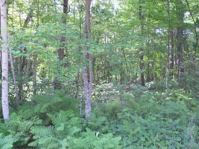 Breezy Point Residential Lots & Land For Sale: Lot 4 Raccoon Lane