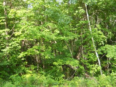Breezy Point Residential Lots & Land For Sale: Lot 10 Raccoon Lane