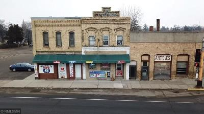 Royalton MN Commercial For Sale: $449,000