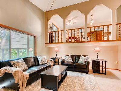 Ham Lake Single Family Home For Sale: 4046 Wildwood Drive NE
