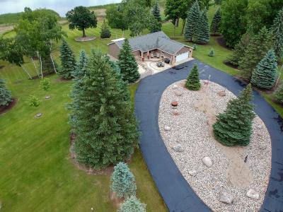 Detroit Lakes Single Family Home For Sale: 17583 W West Long Lake Rd Road