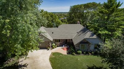 Farmington Single Family Home For Sale: 19189 Echo Lane