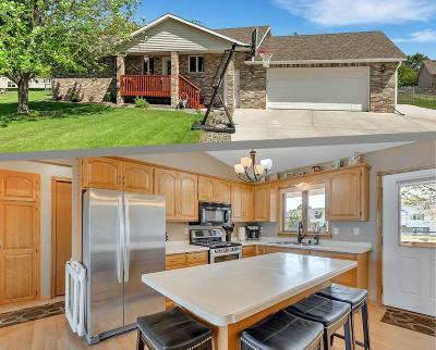Saint Cloud Single Family Home For Sale: 15 Steven Court