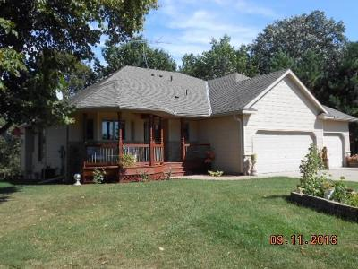 Pine City Single Family Home For Sale: 9077 Maple Shores Drive