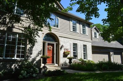 Eagan Single Family Home For Sale: 1157 Blue Heron Court