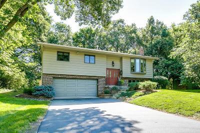 Eden Prairie Single Family Home For Sale: 9501 Woodridge Drive