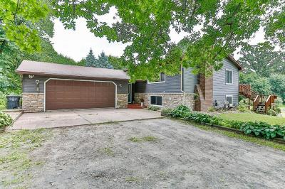 Chisago County, Washington County Single Family Home For Sale: 9200 Jasper Court