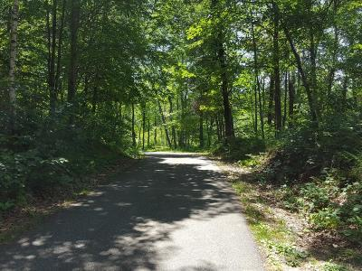 Brainerd Residential Lots & Land For Sale: Xxx Patterson Trail