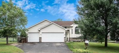 Saint Michael Single Family Home For Sale: 3483 Kahler Drive NE