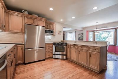 Edina Single Family Home For Sale: 5012 William Avenue