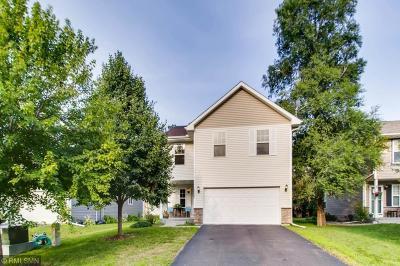 Blaine Single Family Home For Sale: 12529 Quemoy Street NE