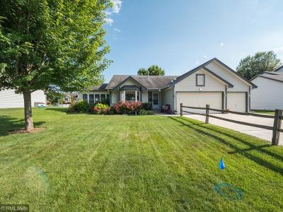 Inver Grove Heights Single Family Home For Sale: 2536 78th Street E