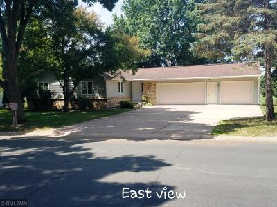 Single Family Home For Sale: 317 N Wasson Lane