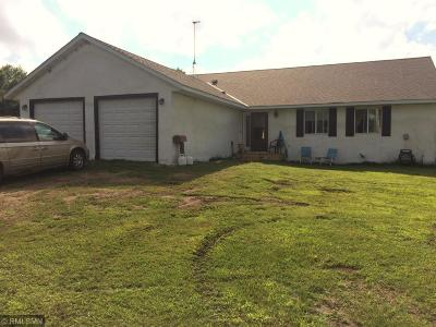 Single Family Home For Sale: 13693 298th Street