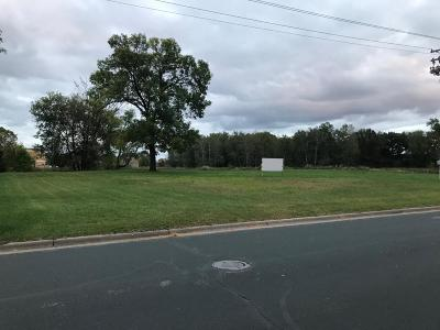 Blaine Residential Lots & Land For Sale: 10311 Flanders Street NE