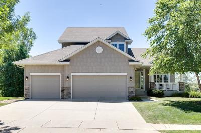 Faribault Single Family Home For Sale: 1201 Goldenray Drive