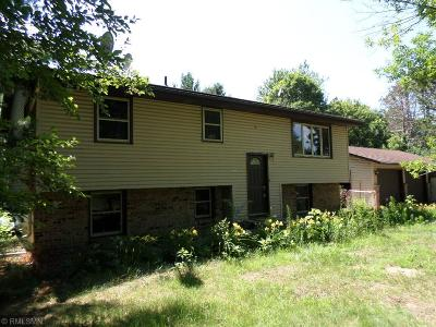 Ham Lake Single Family Home For Sale: 15154 Taylor Street NE