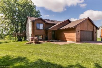 Elk River Single Family Home For Sale: 11908 190th Circle NW