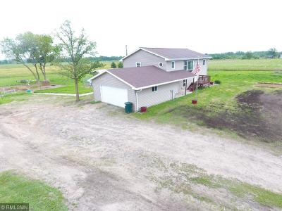 Aitkin MN Single Family Home For Sale: $289,900