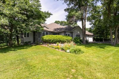 Ham Lake Single Family Home For Sale: 14106 Terrace Road NE