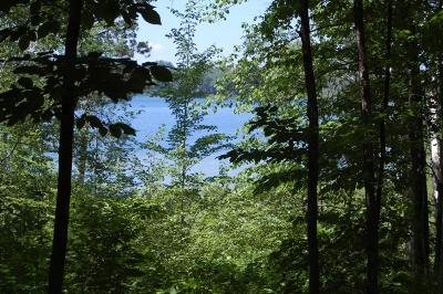 Crosslake Residential Lots & Land For Sale: 38397 Moccasin Drive
