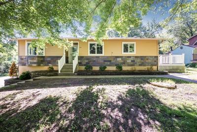 Chisago County, Washington County Single Family Home For Sale: 111 Brick Street S