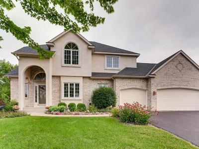 Eden Prairie Single Family Home For Sale: 9231 Cold Stream Lane