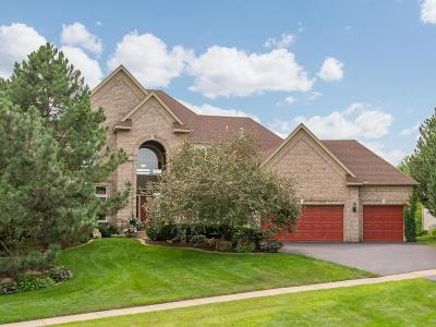 Eden Prairie Single Family Home For Sale: 18726 Erin Bay