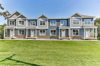 Blaine Condo/Townhouse For Sale: 9043 Lexington Avenue NE #C