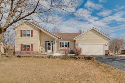 Farmington Single Family Home For Sale: 3193 199th Street W