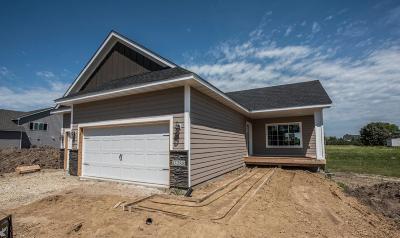Rosemount Single Family Home For Sale: 13288 Caffrey Avenue
