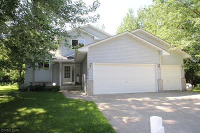 Sherburne County Single Family Home For Sale: 30014 Highway 169