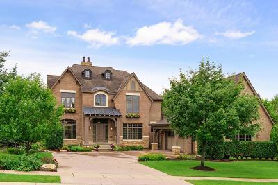 Eden Prairie Single Family Home For Sale: 9610 Sky Lane