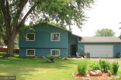 Ham Lake Single Family Home For Sale: 16945 Chisholm Street NE