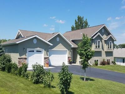 Detroit Lakes, Pelican Rapids Single Family Home For Sale: 1187 Long Bridge Circle