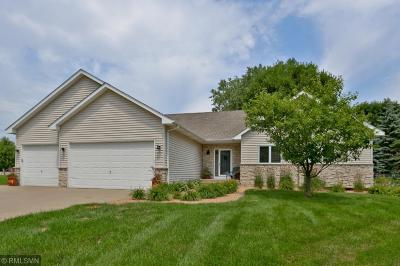 Chisago County, Washington County Single Family Home For Sale: 5665 Hytrail Avenue N