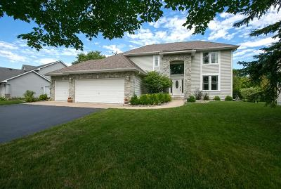 Chanhassen Single Family Home For Sale: 9124 Sunnyvale Drive