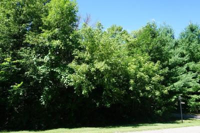Hager City Residential Lots & Land For Sale: Lot 19 845th Street