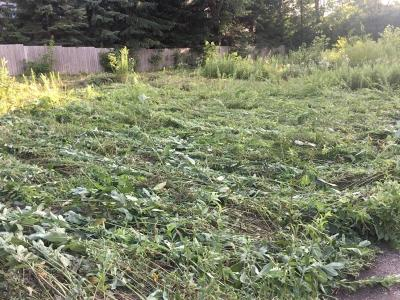 Woodbury Residential Lots & Land For Sale: 2432 Woodlane Drive