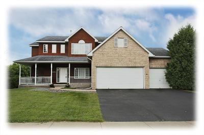 Maple Grove Single Family Home For Sale: 17293 79th Place N