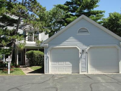 Bloomington MN Condo/Townhouse For Sale: $149,000
