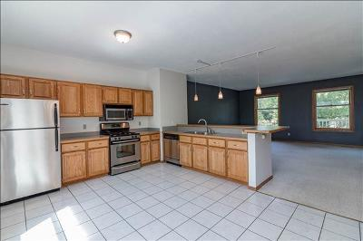 Minneapolis Condo/Townhouse For Sale: 2607 S 8th Street