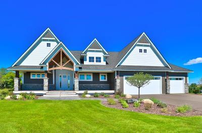 Single Family Home For Sale: 348 White Eagle Trail